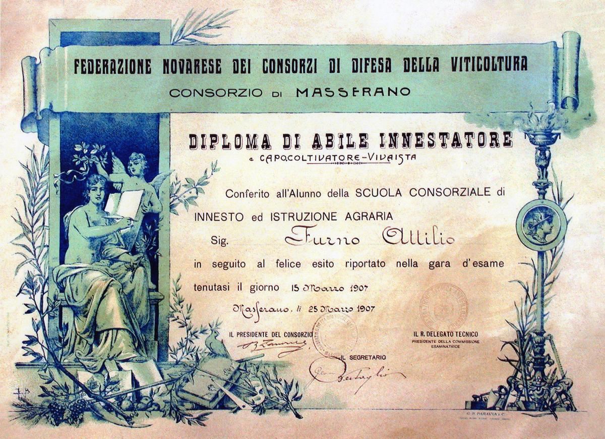 Diploma di Abile Innestatore – Attilio Furno